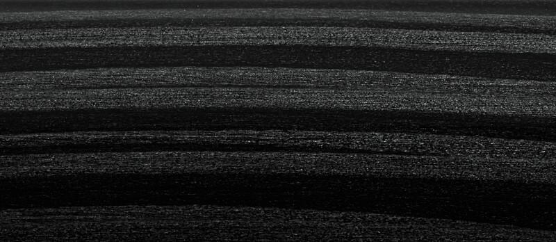 縞杢(ブラック)